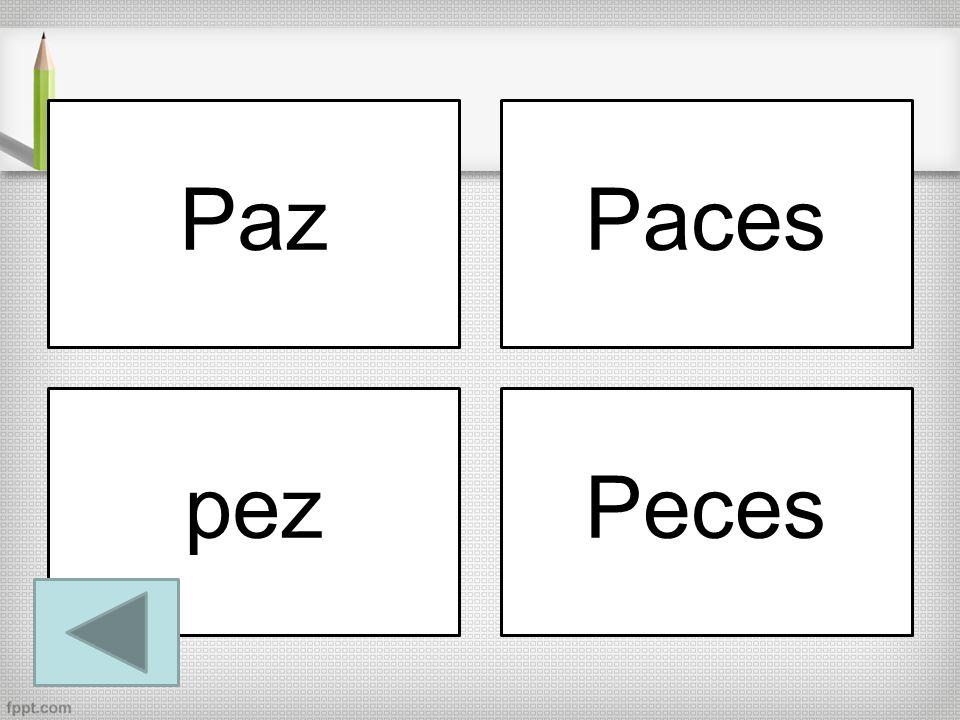 Paz Paces pez Peces