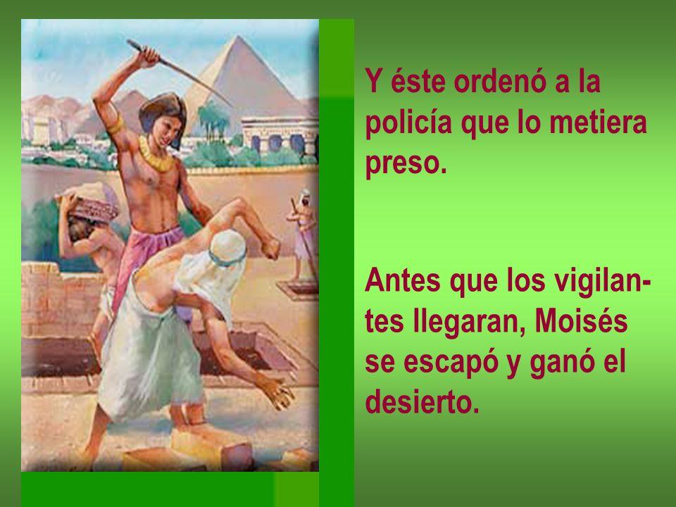 Y éste ordenó a la policía que lo metiera. preso. Antes que los vigilan- tes llegaran, Moisés. se escapó y ganó el.