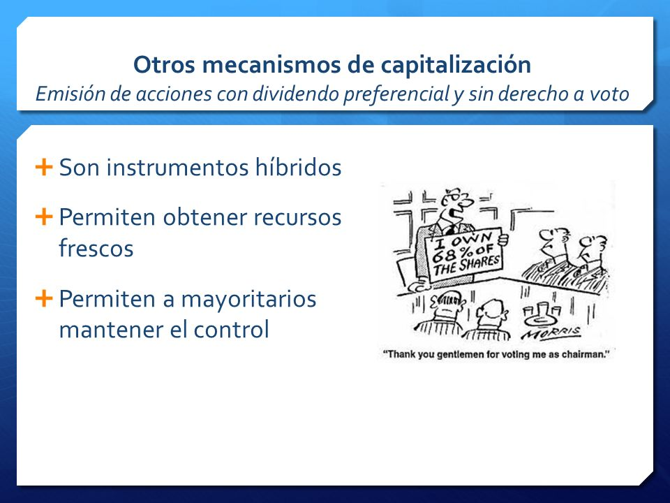 Otros mecanismos de capitalización Emisión de acciones con dividendo preferencial y sin derecho a voto