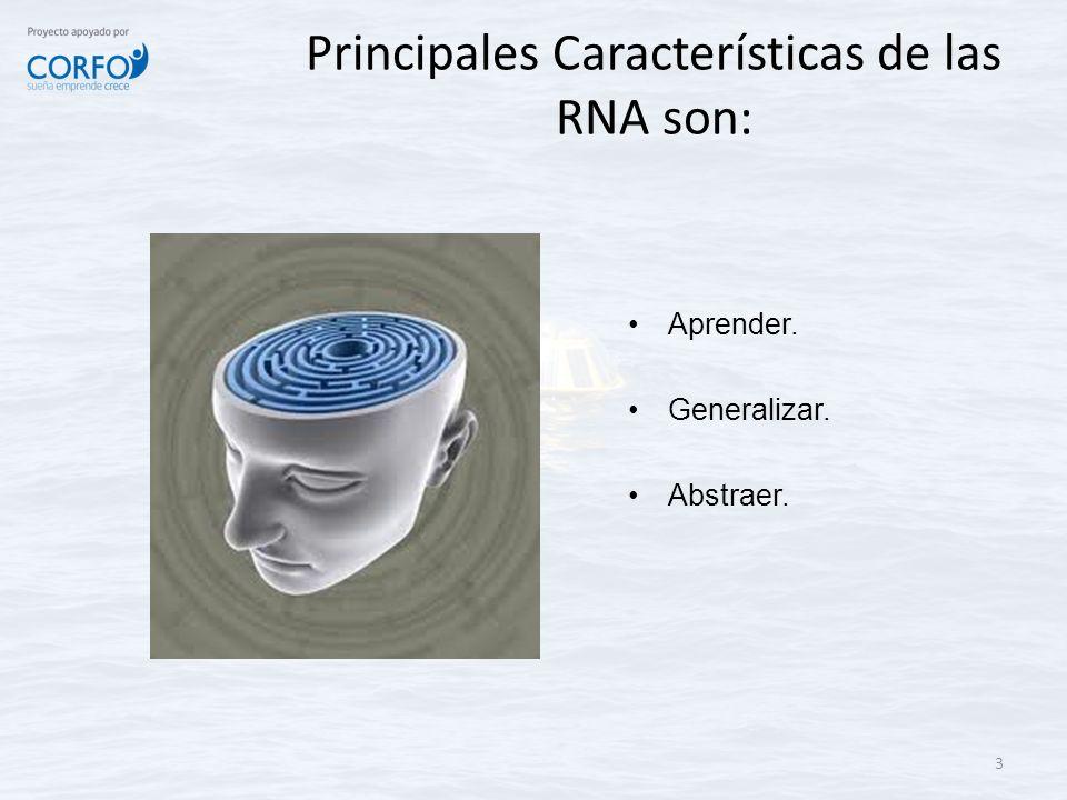Principales Características de las RNA son: