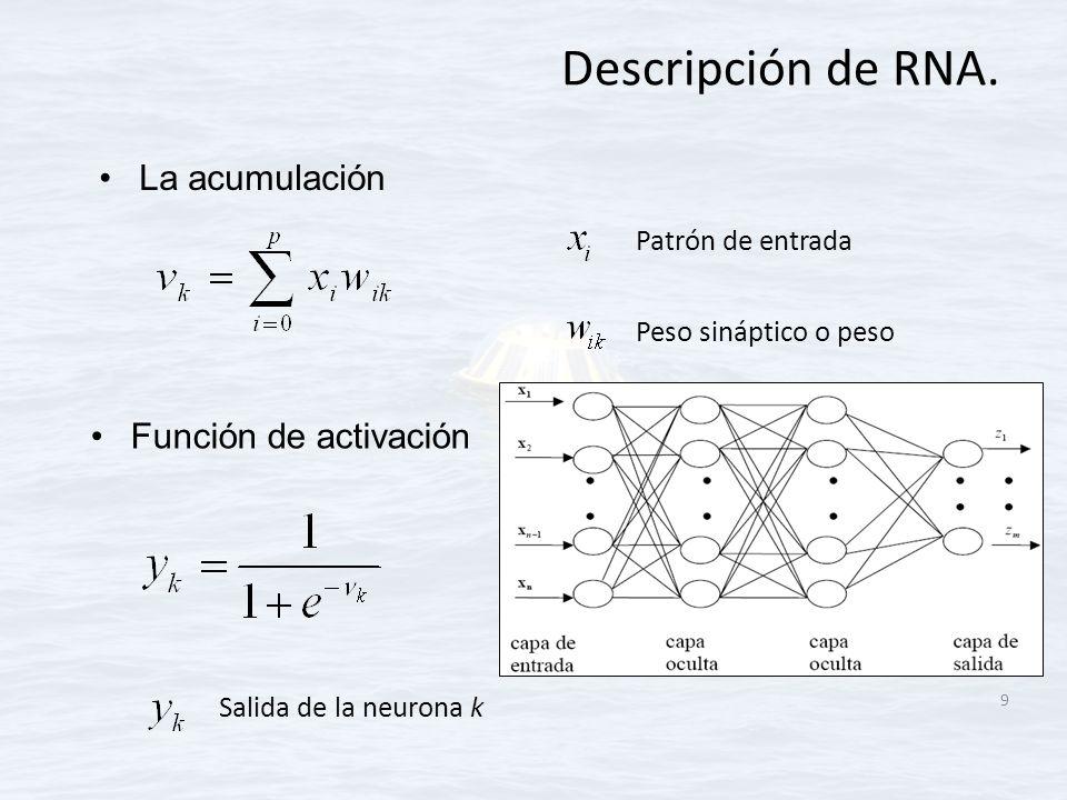 Descripción de RNA. La acumulación Función de activación