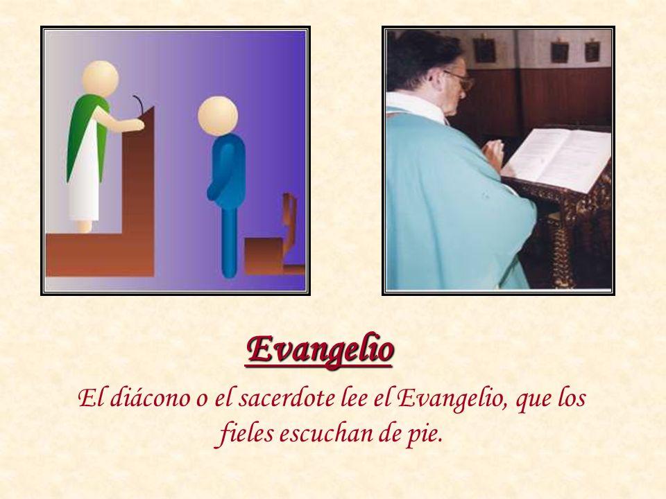 Evangelio El diácono o el sacerdote lee el Evangelio, que los fieles escuchan de pie.