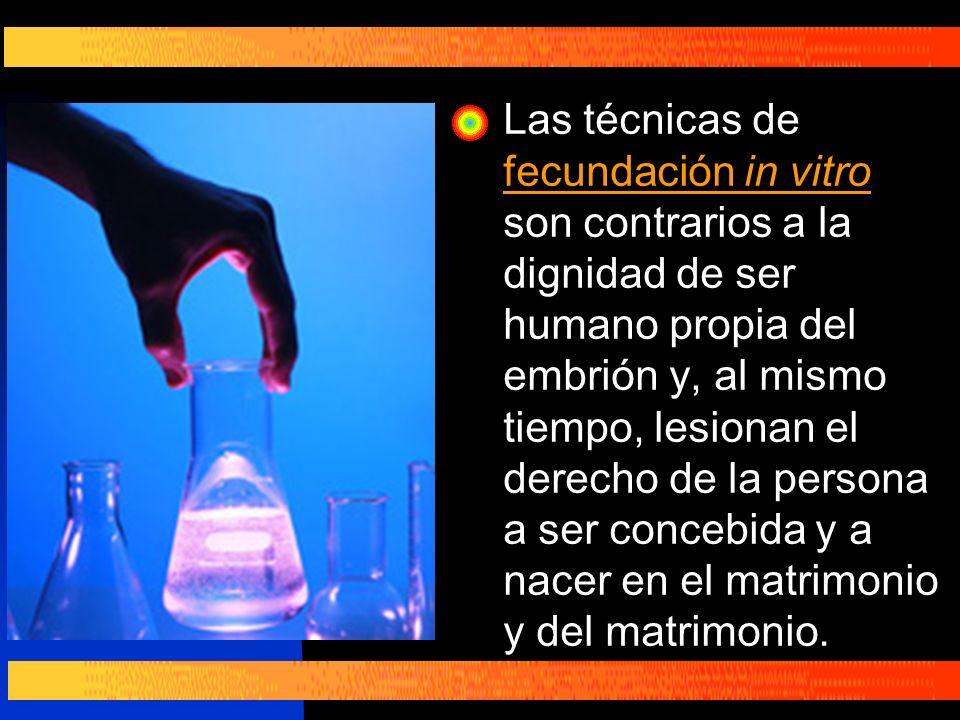 Las técnicas de fecundación in vitro son contrarios a la dignidad de ser humano propia del embrión y, al mismo tiempo, lesionan el derecho de la persona a ser concebida y a nacer en el matrimonio y del matrimonio.