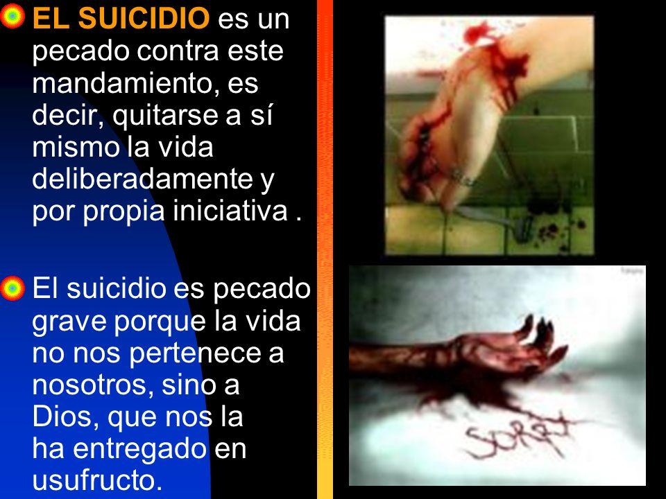 EL SUICIDIO es un pecado contra este mandamiento, es decir, quitarse a sí mismo la vida deliberadamente y por propia iniciativa .