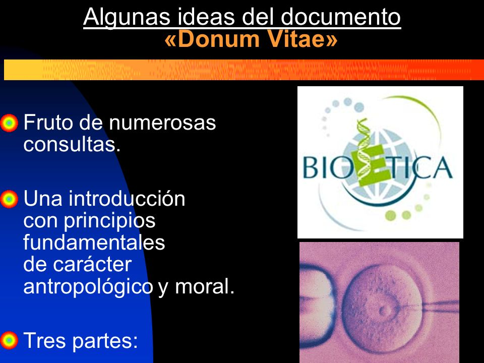 Algunas ideas del documento «Donum Vitae»