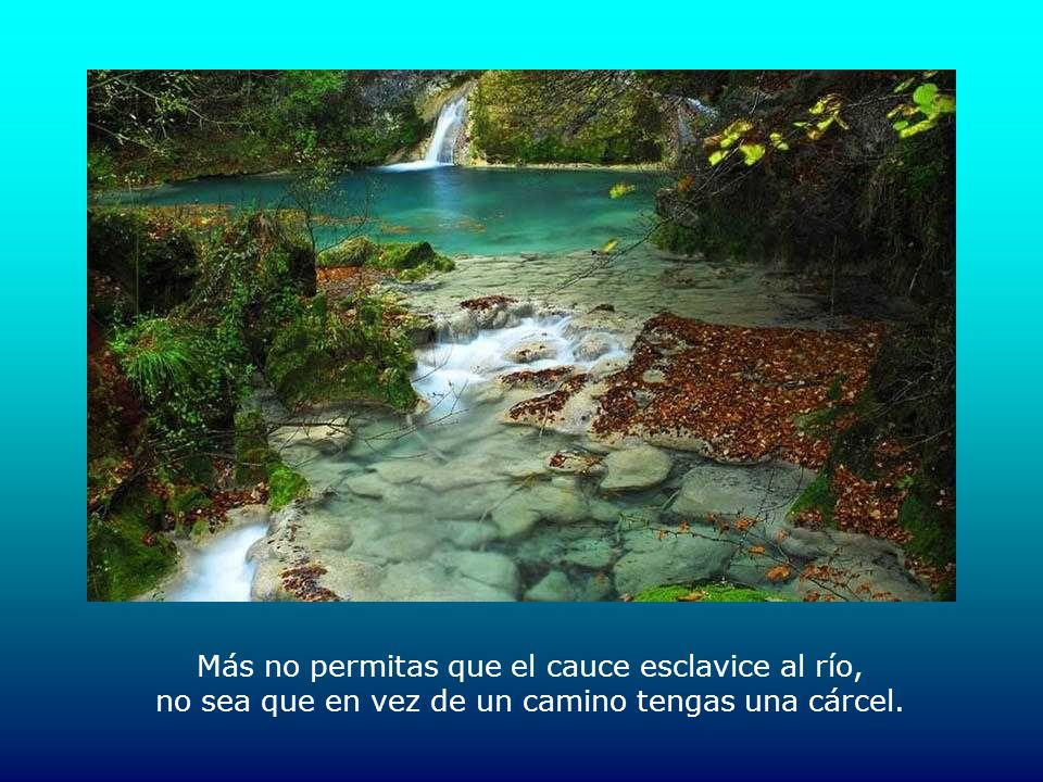 Más no permitas que el cauce esclavice al río, no sea que en vez de un camino tengas una cárcel.