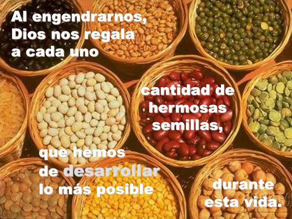 Al engendrarnos, Dios nos regala. a cada uno. cantidad de. hermosas semillas, que hemos. de desarrollar.
