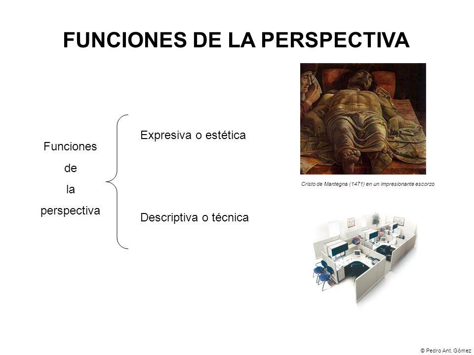 FUNCIONES DE LA PERSPECTIVA