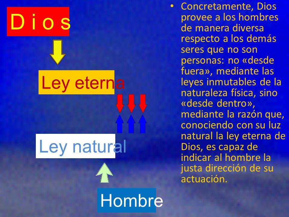 D i o s Ley eterna Ley natural Hombre