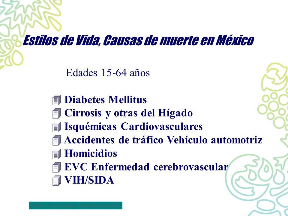 Estilos de Vida, Causas de muerte en México