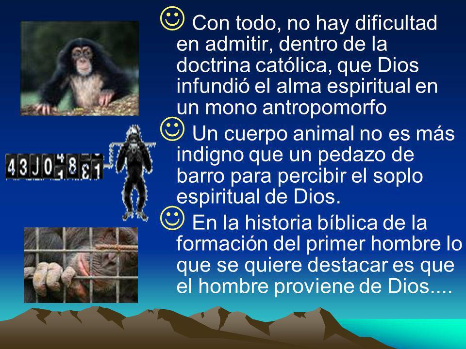 Con todo, no hay dificultad en admitir, dentro de la doctrina católica, que Dios infundió el alma espiritual en un mono antropomorfo