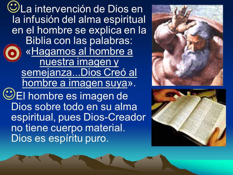 La intervención de Dios en la infusión del alma espiritual en el hombre se explica en la Biblia con las palabras: «Hagamos al hombre a nuestra imagen y semejanza...Dios Creó al hombre a imagen suya».