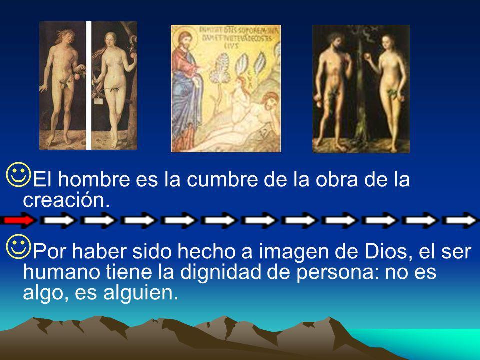 El hombre es la cumbre de la obra de la creación.
