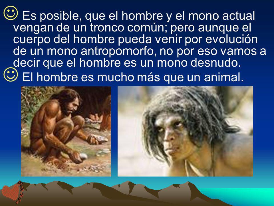 Es posible, que el hombre y el mono actual vengan de un tronco común; pero aunque el cuerpo del hombre pueda venir por evolución de un mono antropomorfo, no por eso vamos a decir que el hombre es un mono desnudo.