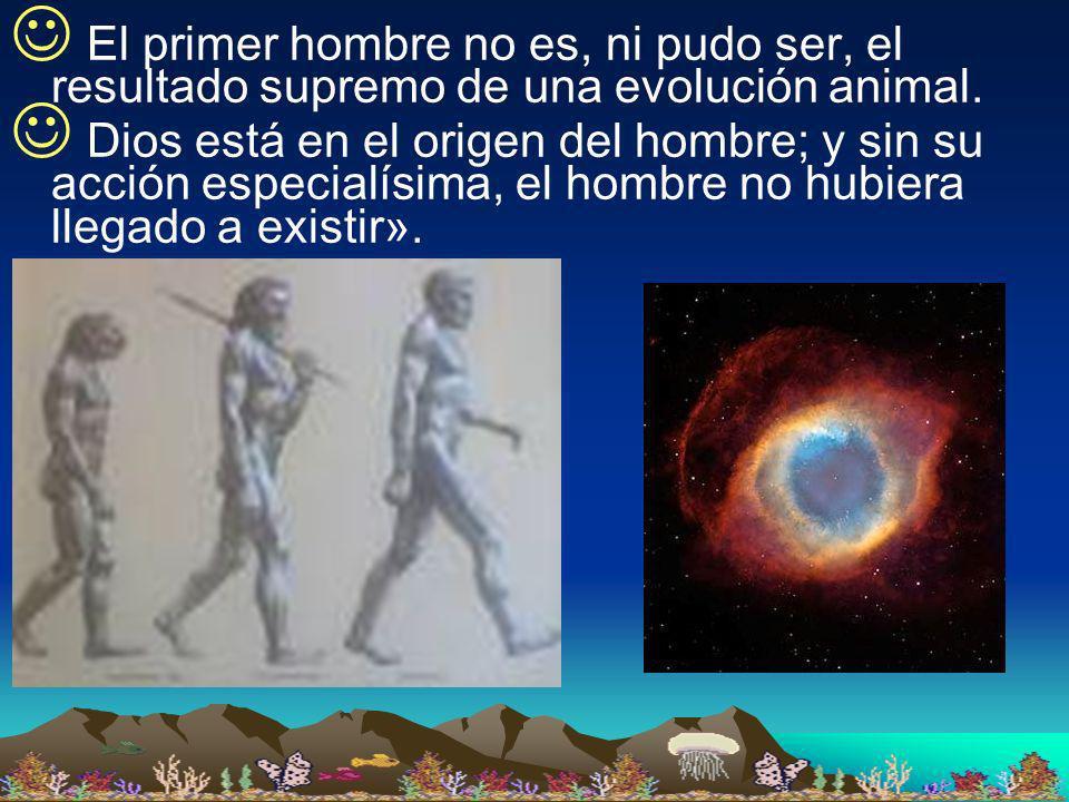 El primer hombre no es, ni pudo ser, el resultado supremo de una evolución animal.