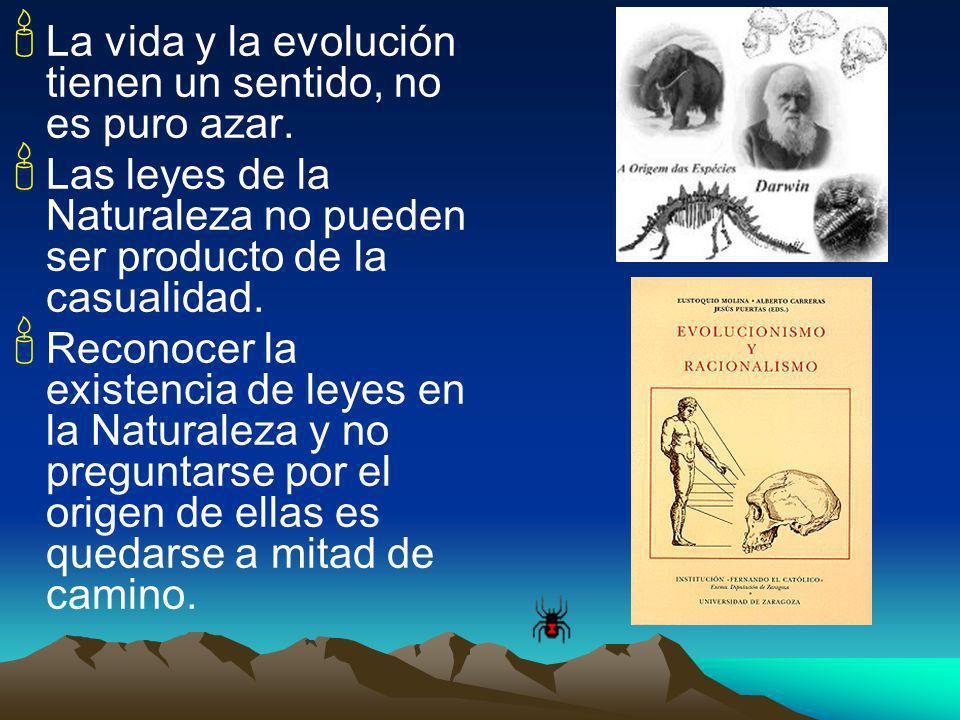 La vida y la evolución tienen un sentido, no es puro azar.