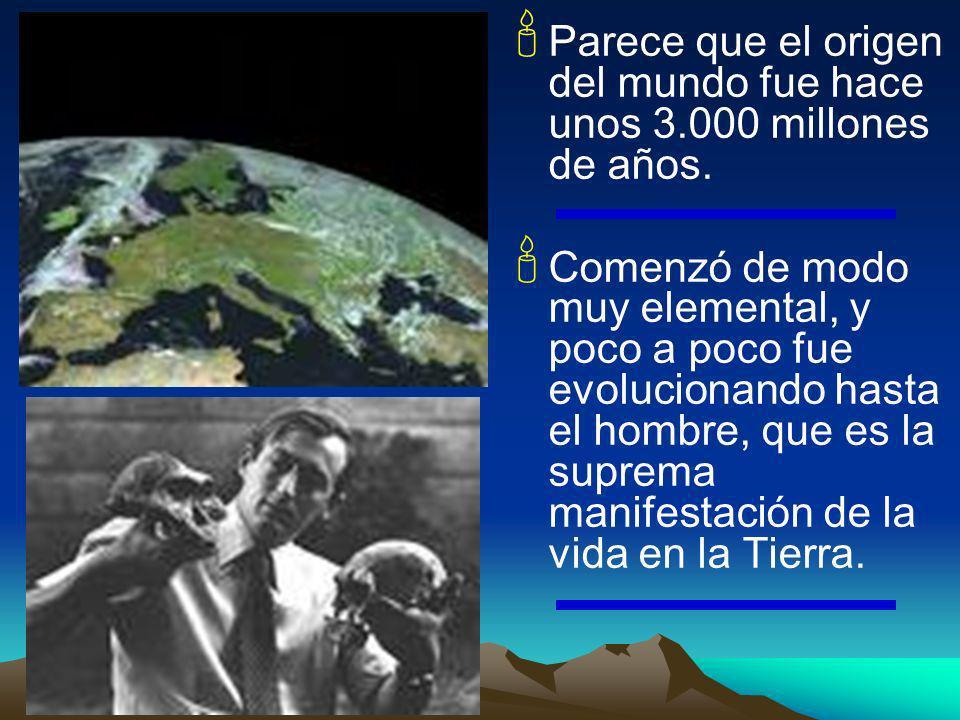 Parece que el origen del mundo fue hace unos 3.000 millones de años.