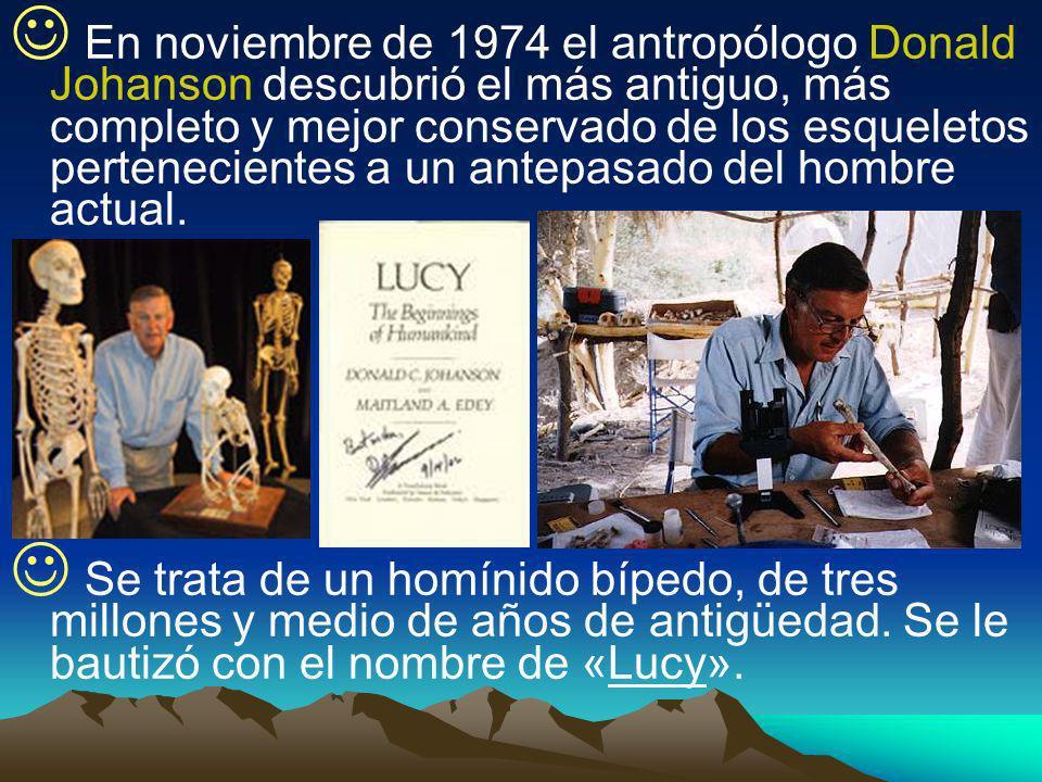 En noviembre de 1974 el antropólogo Donald Johanson descubrió el más antiguo, más completo y mejor conservado de los esqueletos pertenecientes a un antepasado del hombre actual.