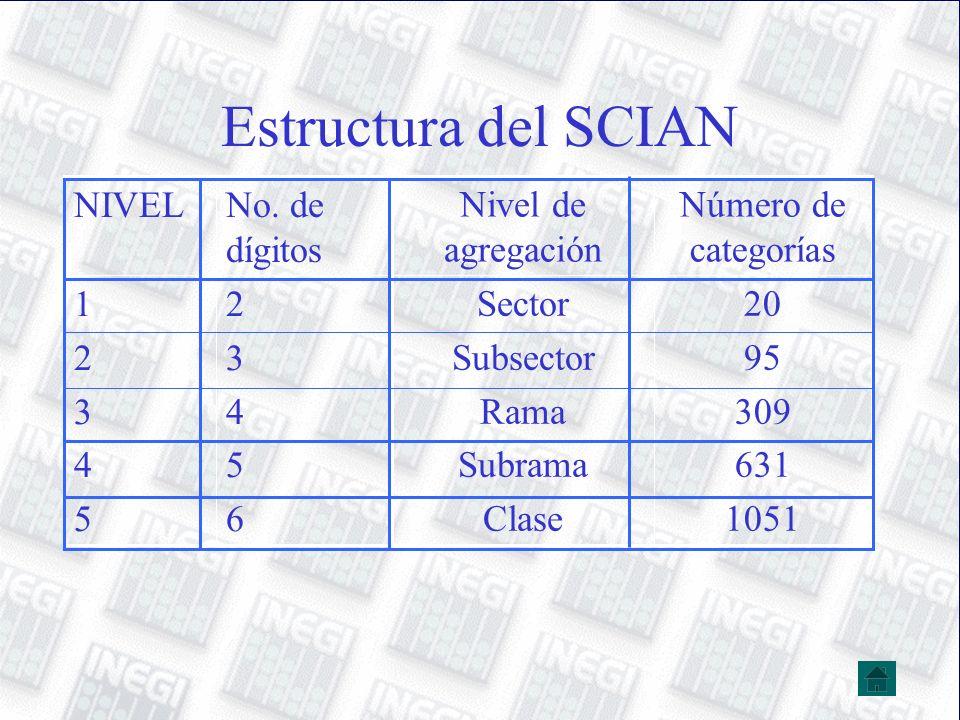Estructura del SCIAN 20 95 309 631 1051 Sector Subsector Rama Subrama