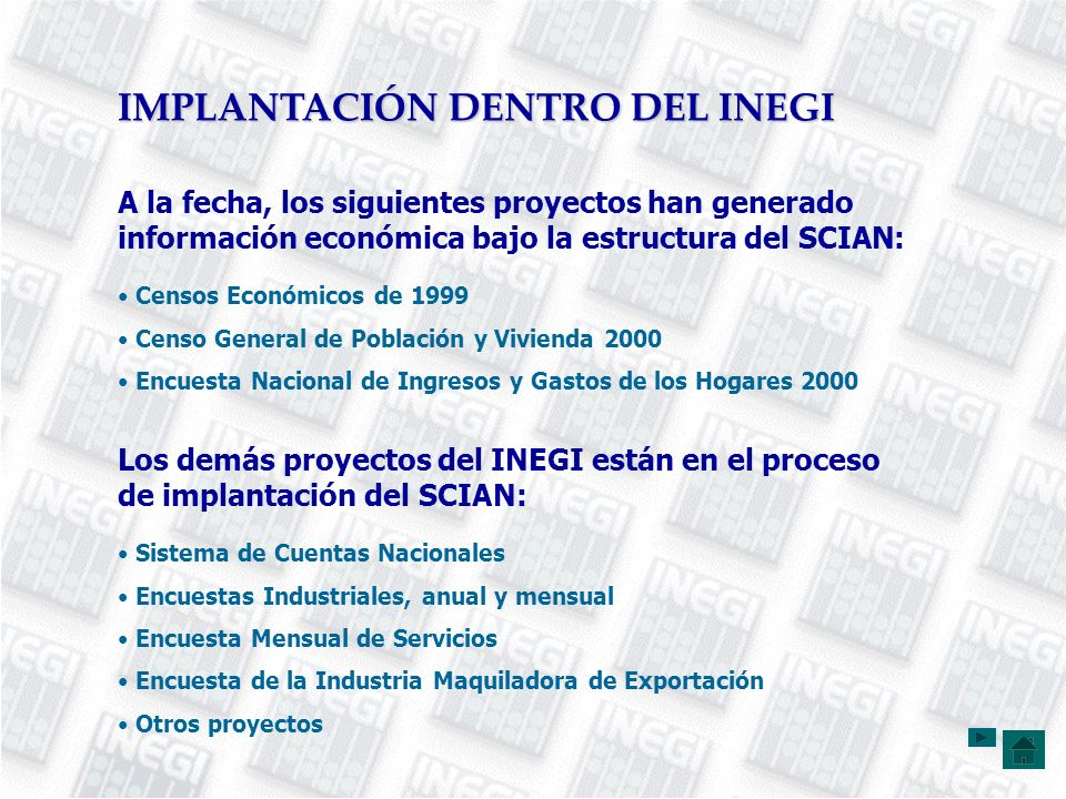 IMPLANTACIÓN DENTRO DEL INEGI