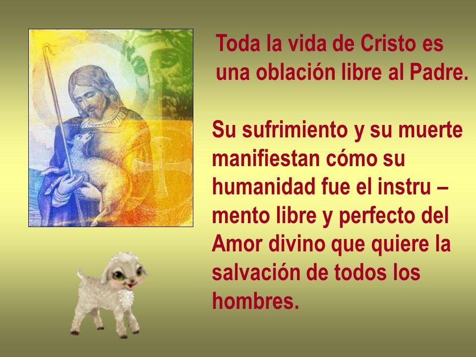 Toda la vida de Cristo es