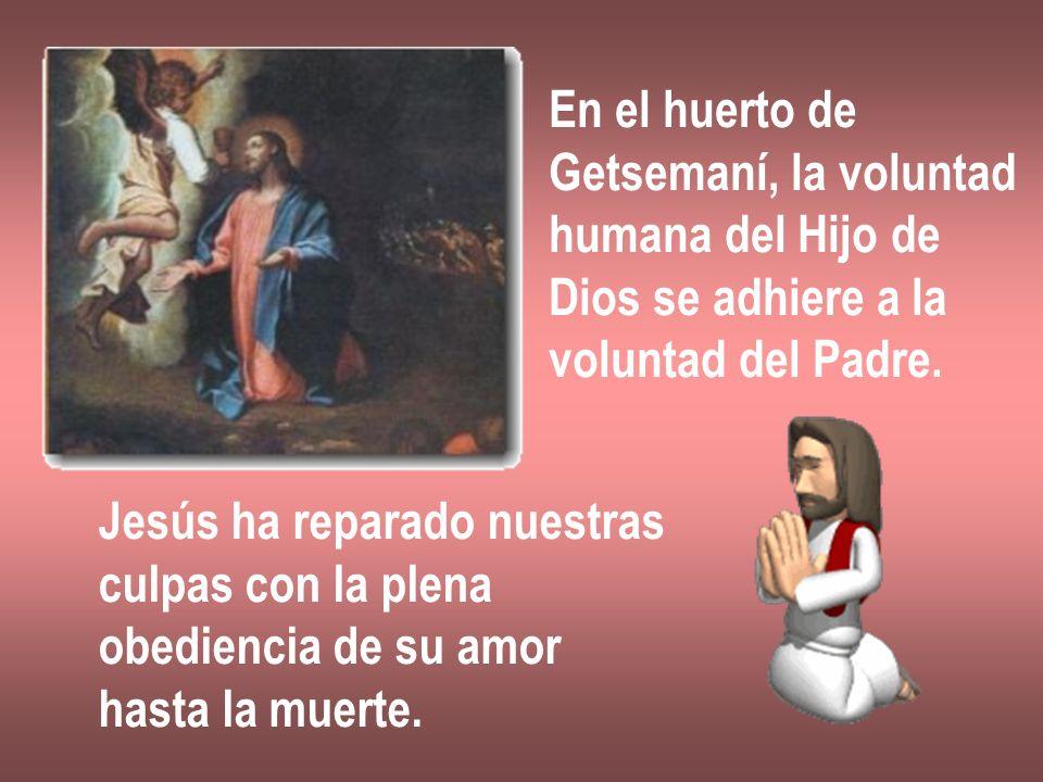 En el huerto de Getsemaní, la voluntad. humana del Hijo de. Dios se adhiere a la. voluntad del Padre.