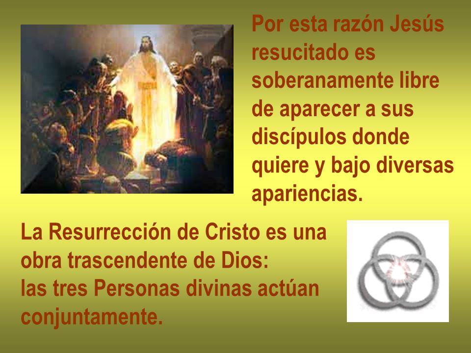 Por esta razón Jesús resucitado es. soberanamente libre. de aparecer a sus. discípulos donde. quiere y bajo diversas.