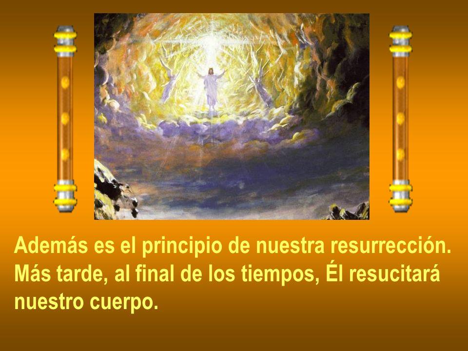 Además es el principio de nuestra resurrección.