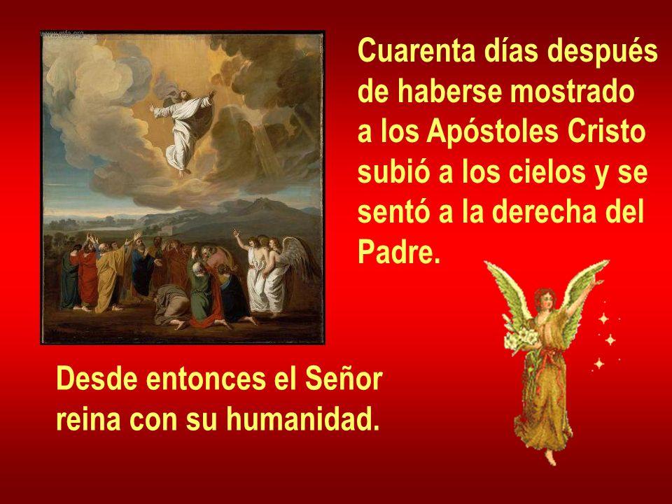 Cuarenta días después de haberse mostrado. a los Apóstoles Cristo. subió a los cielos y se. sentó a la derecha del.