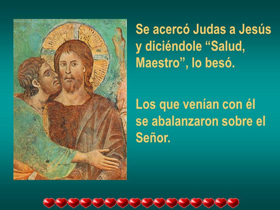 Se acercó Judas a Jesús y diciéndole Salud, Maestro , lo besó. Los que venían con él. se abalanzaron sobre el.