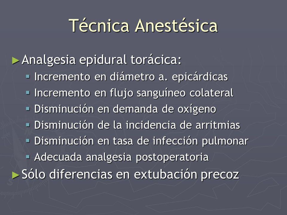 Técnica Anestésica Analgesia epidural torácica: