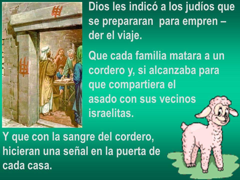 Dios les indicó a los judíos que