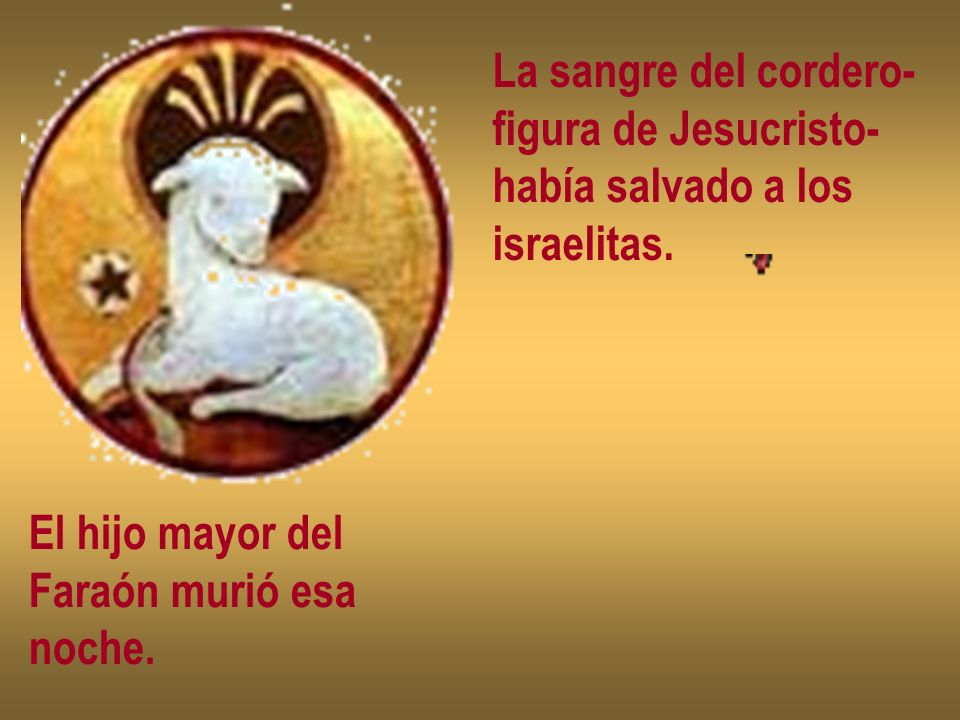 La sangre del cordero- figura de Jesucristo- había salvado a los. israelitas. El hijo mayor del.