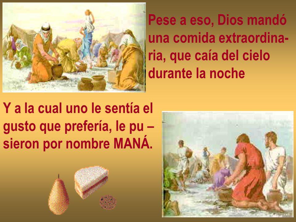 Pese a eso, Dios mandóuna comida extraordina- ria, que caía del cielo. durante la noche. Y a la cual uno le sentía el.
