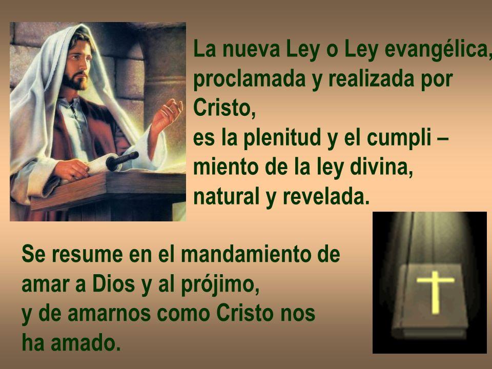 La nueva Ley o Ley evangélica,