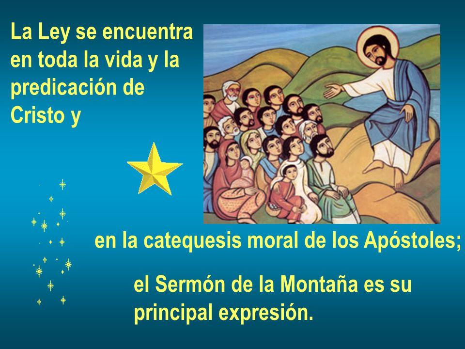 La Ley se encuentra en toda la vida y la. predicación de. Cristo y. en la catequesis moral de los Apóstoles;
