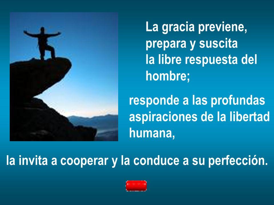 La gracia previene,prepara y suscita. la libre respuesta del. hombre; responde a las profundas. aspiraciones de la libertad.