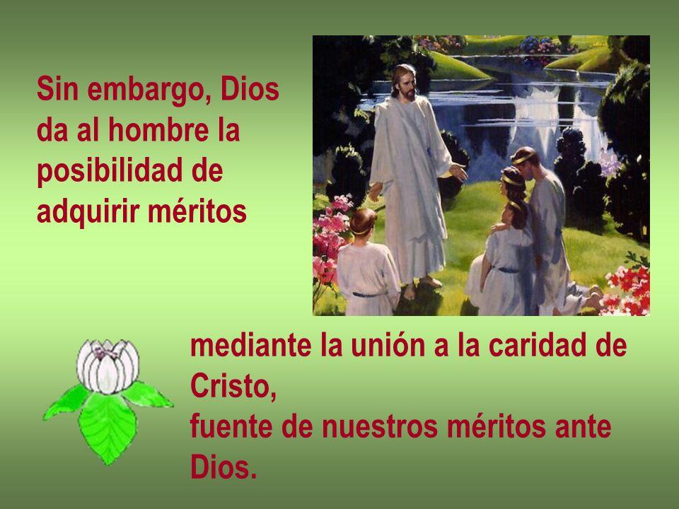 Sin embargo, Diosda al hombre la. posibilidad de. adquirir méritos. mediante la unión a la caridad de.