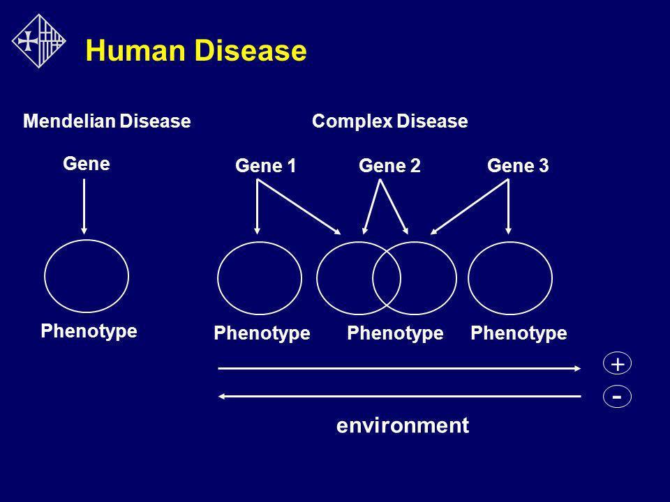 Human Disease - + environment Mendelian Disease Complex Disease Gene