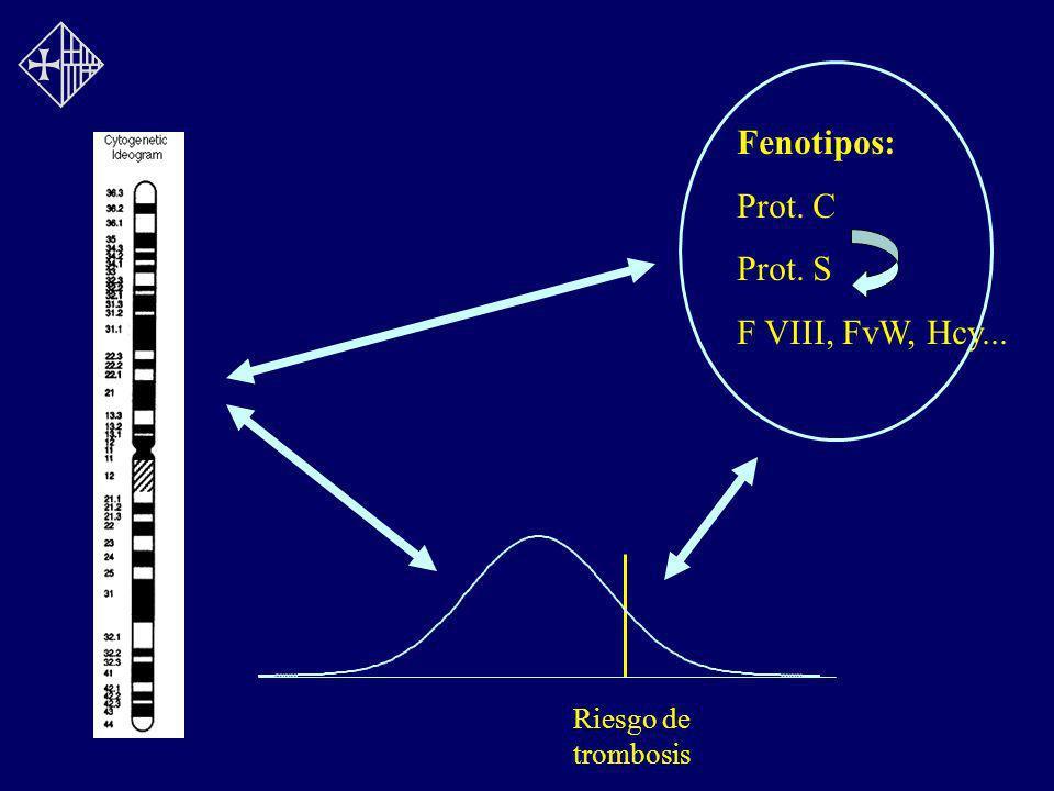 Fenotipos: Prot. C Prot. S F VIII, FvW, Hcy... Riesgo de trombosis