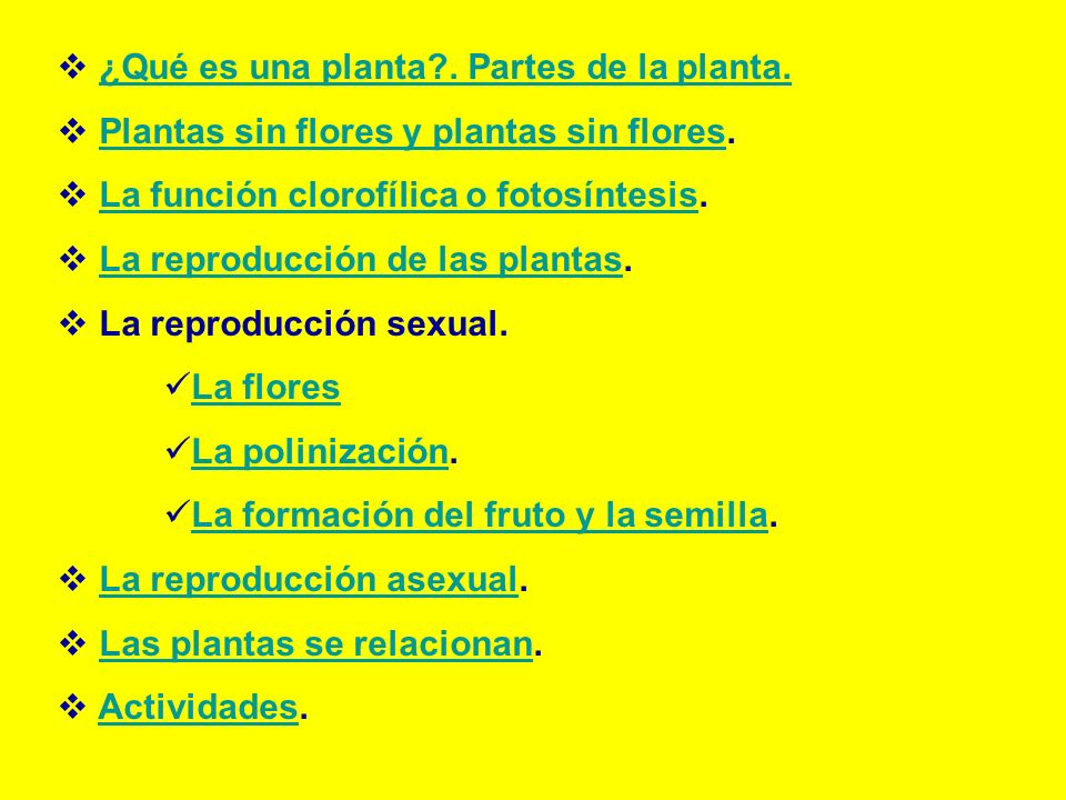 ¿Qué es una planta . Partes de la planta.