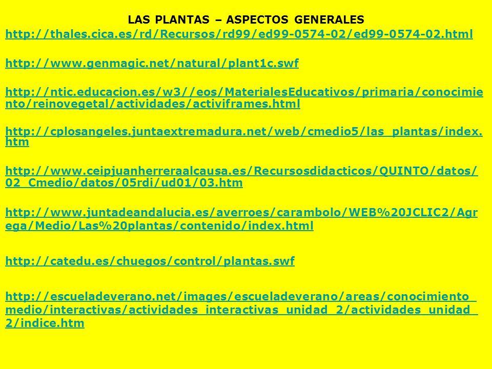 LAS PLANTAS – ASPECTOS GENERALES