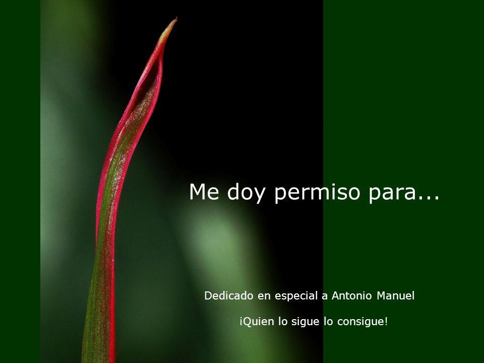 Me doy permiso para... Dedicado en especial a Antonio Manuel