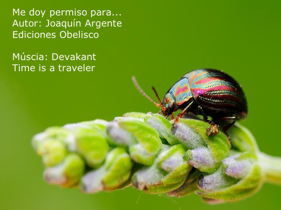 Me doy permiso para... Autor: Joaquín Argente Ediciones Obelisco Múscia: Devakant Time is a traveler