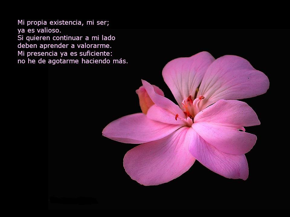 Mi propia existencia, mi ser;
