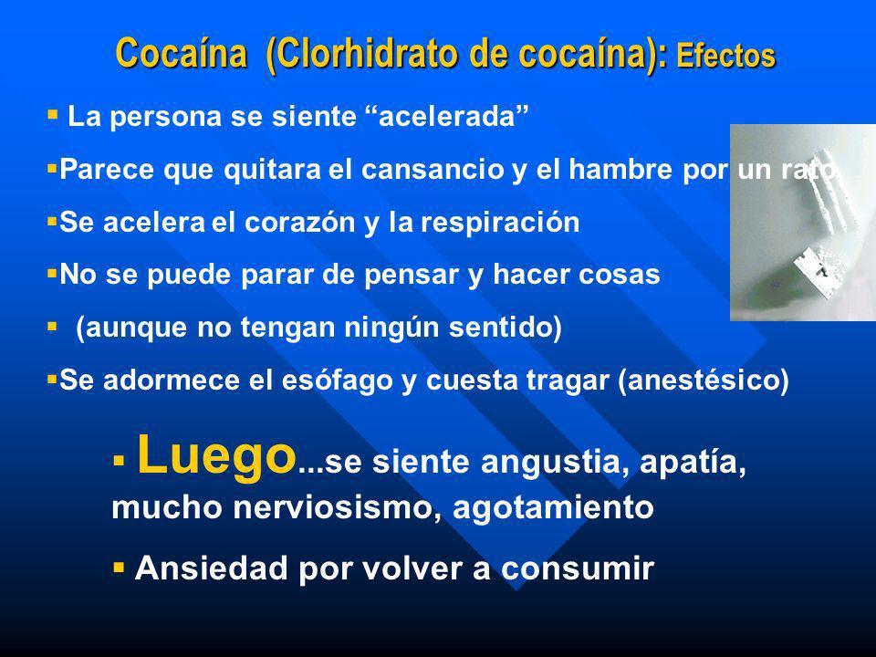 Cocaína (Clorhidrato de cocaína): Efectos