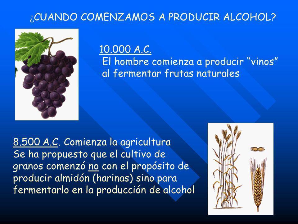 ¿CUANDO COMENZAMOS A PRODUCIR ALCOHOL