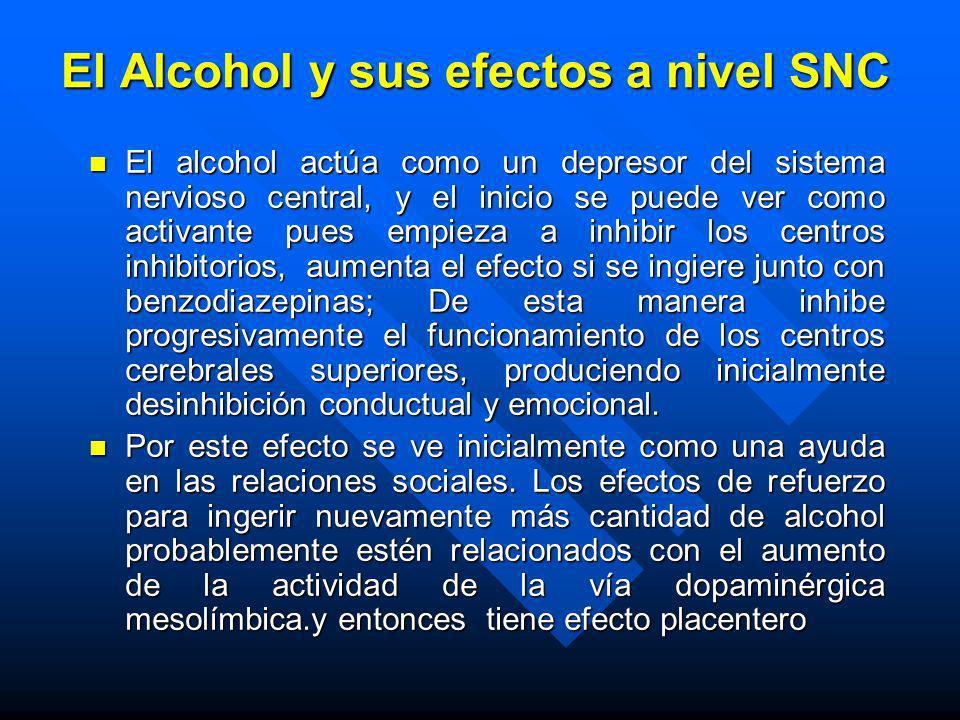 El Alcohol y sus efectos a nivel SNC