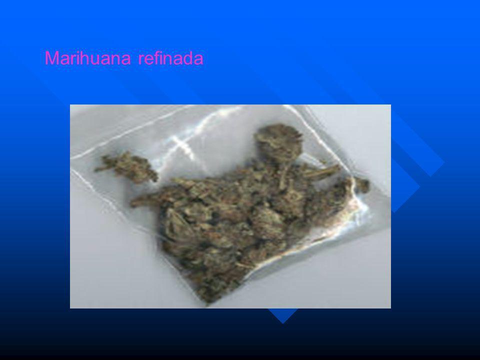 Marihuana refinada