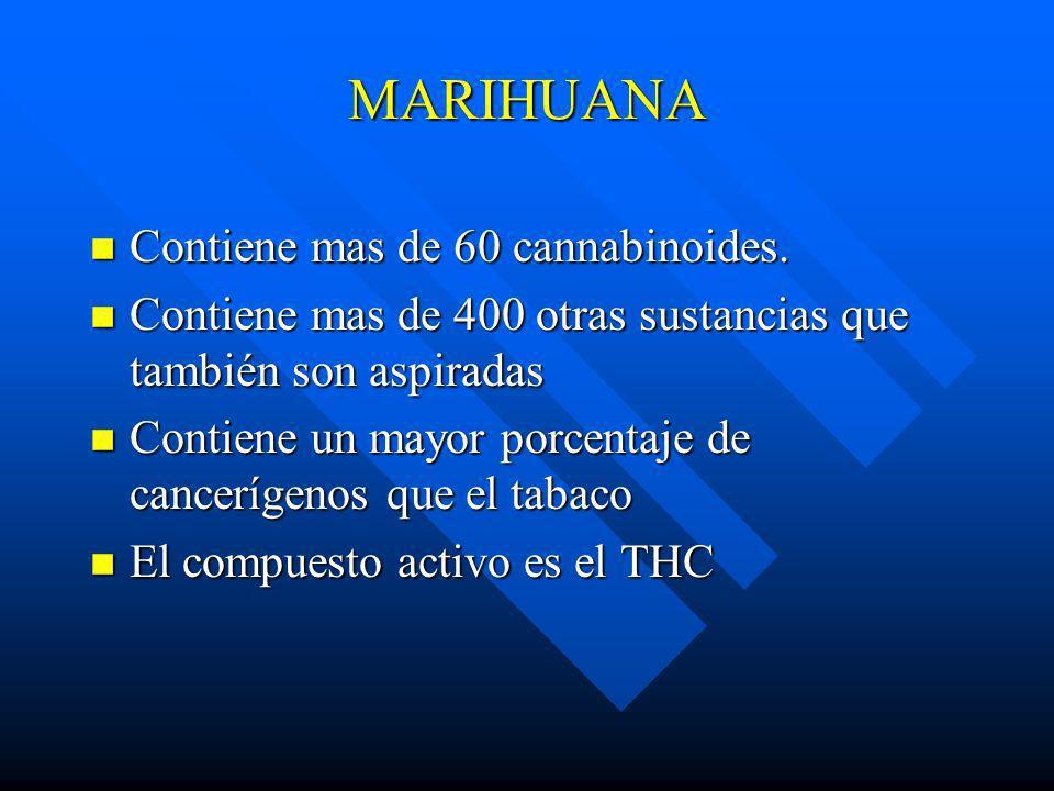 MARIHUANA Contiene mas de 60 cannabinoides.